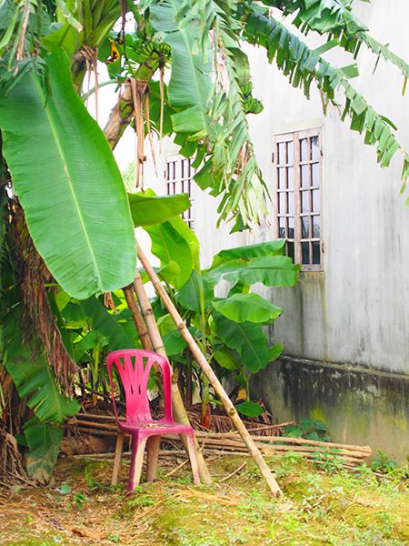 バナナの葉と赤いプラスティック椅子